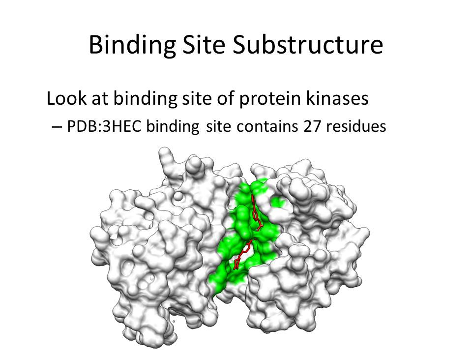 Binding Site Substructure