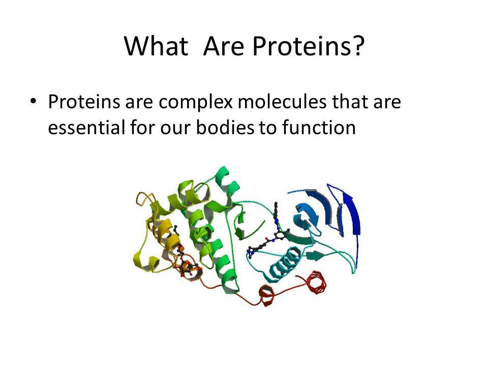 What Are Proteins. Proteins are complex molecules that are essential for our bodies to function.