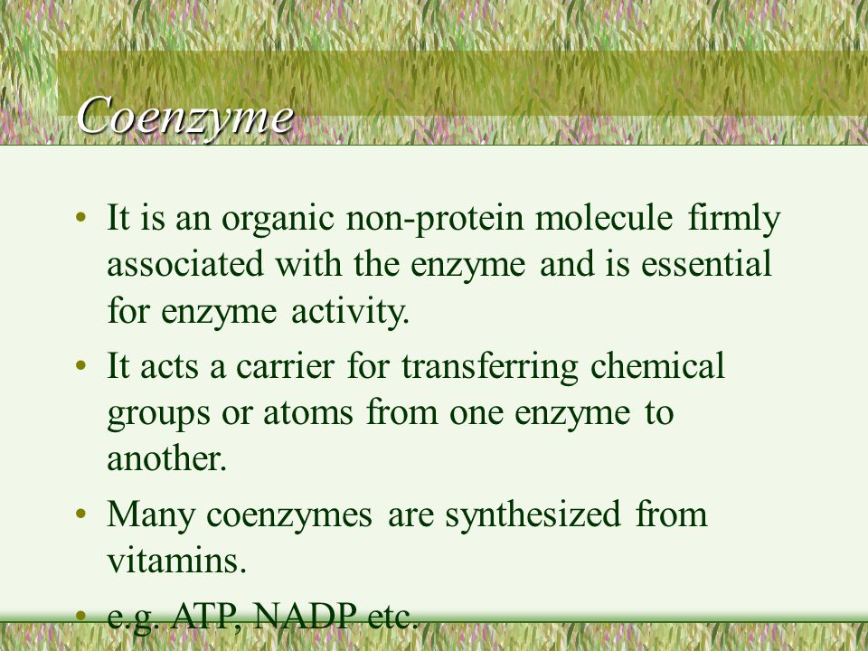 Coenzyme It is an organic non-protein molecule firmly associated with the enzyme and is essential for enzyme activity.