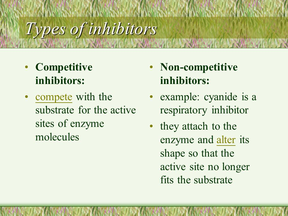 Types of inhibitors Competitive inhibitors: