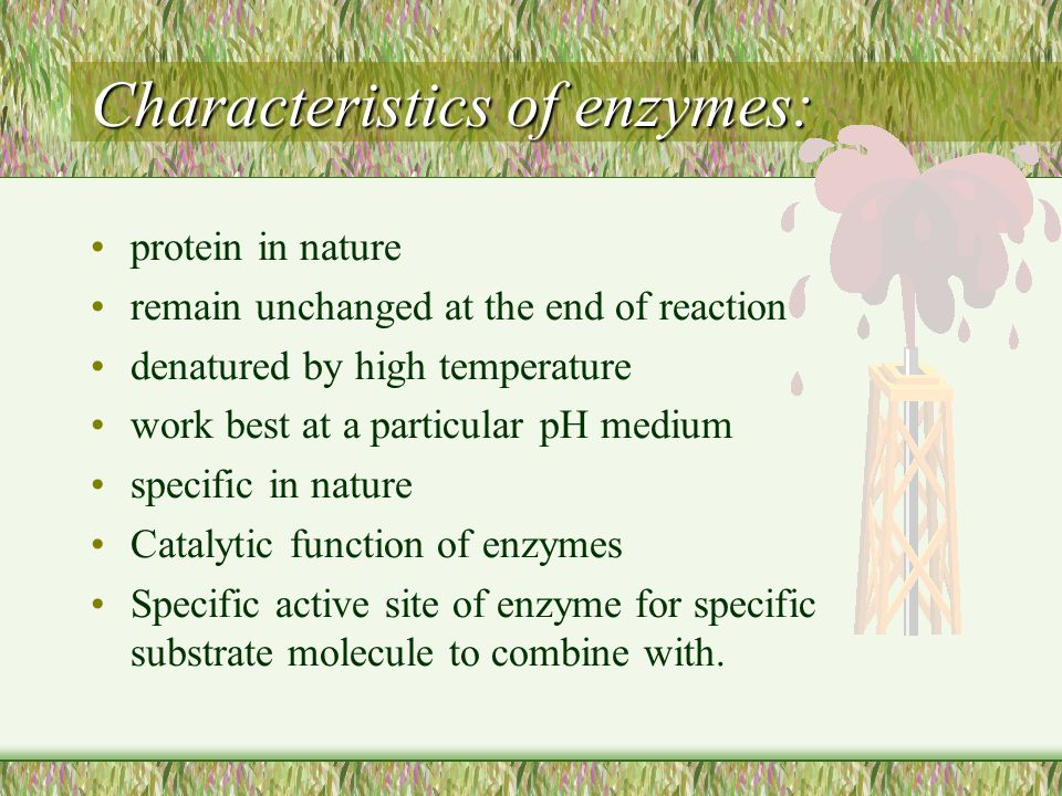Characteristics of enzymes: