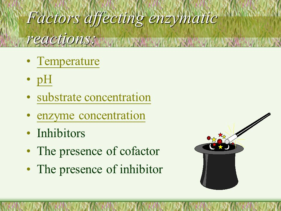 Factors affecting enzymatic reactions: