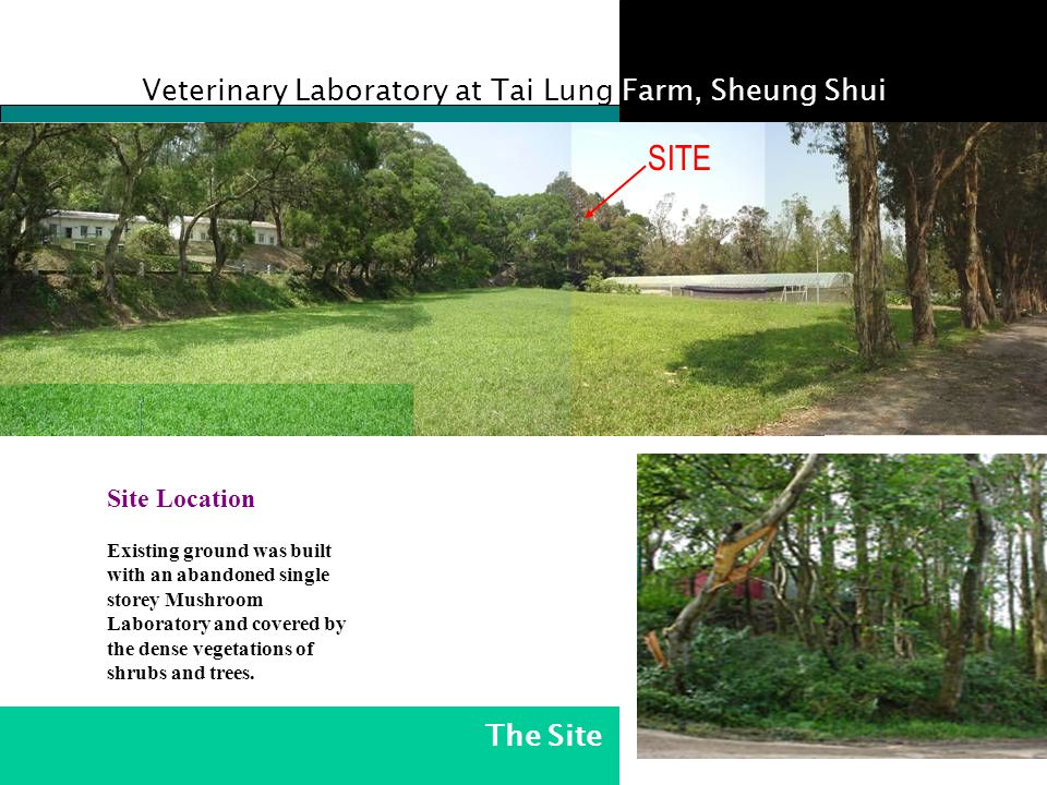 SITE SITE Veterinary Laboratory at Tai Lung Farm, Sheung Shui The Site