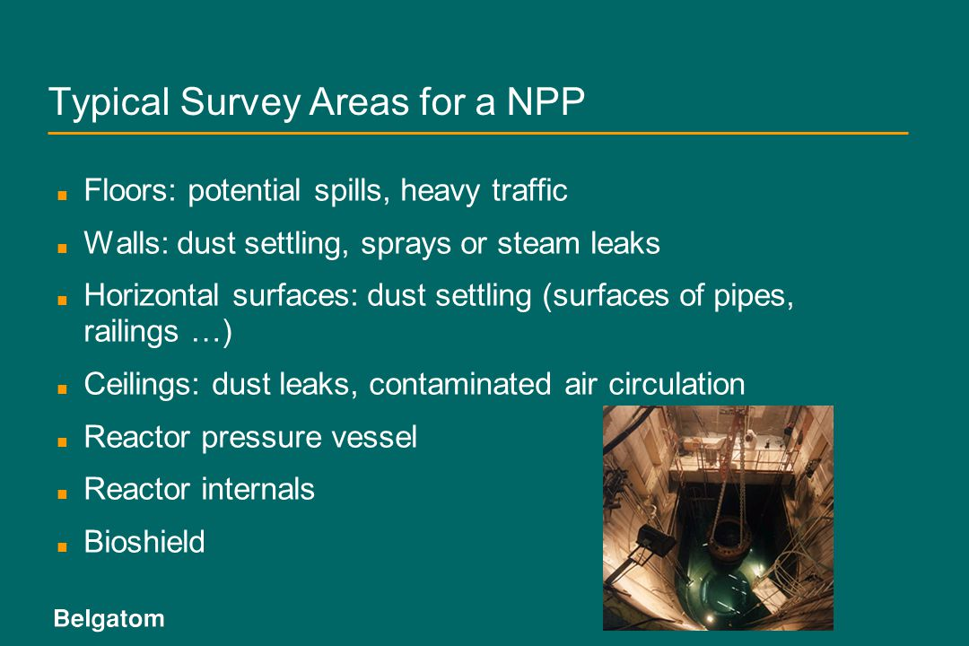 Typical Survey Areas for a NPP