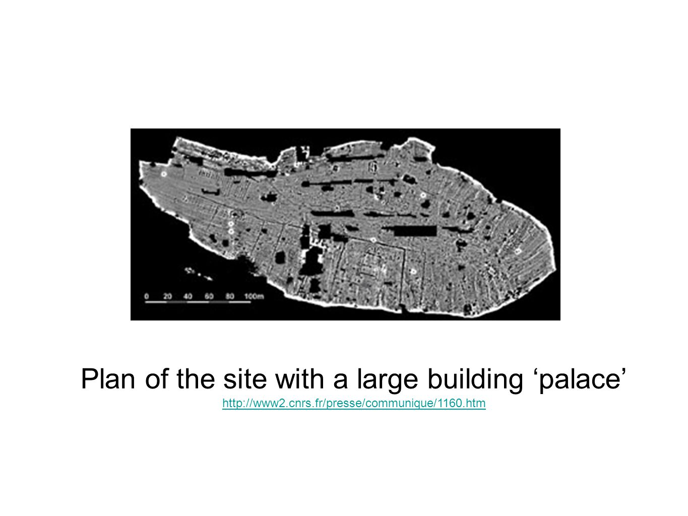 Plan of the site with a large building 'palace'
