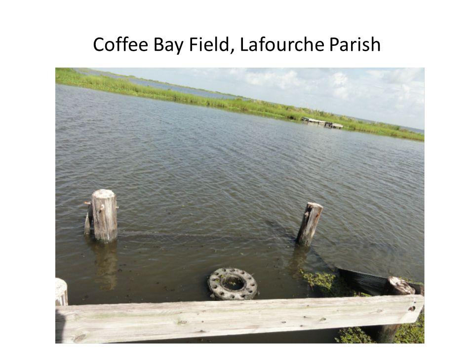 Coffee Bay Field, Lafourche Parish