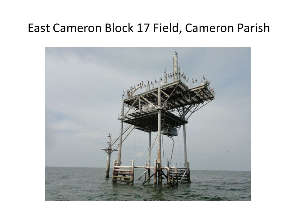 East Cameron Block 17 Field, Cameron Parish
