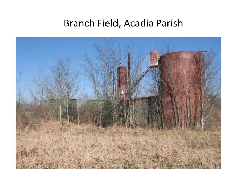 Branch Field, Acadia Parish