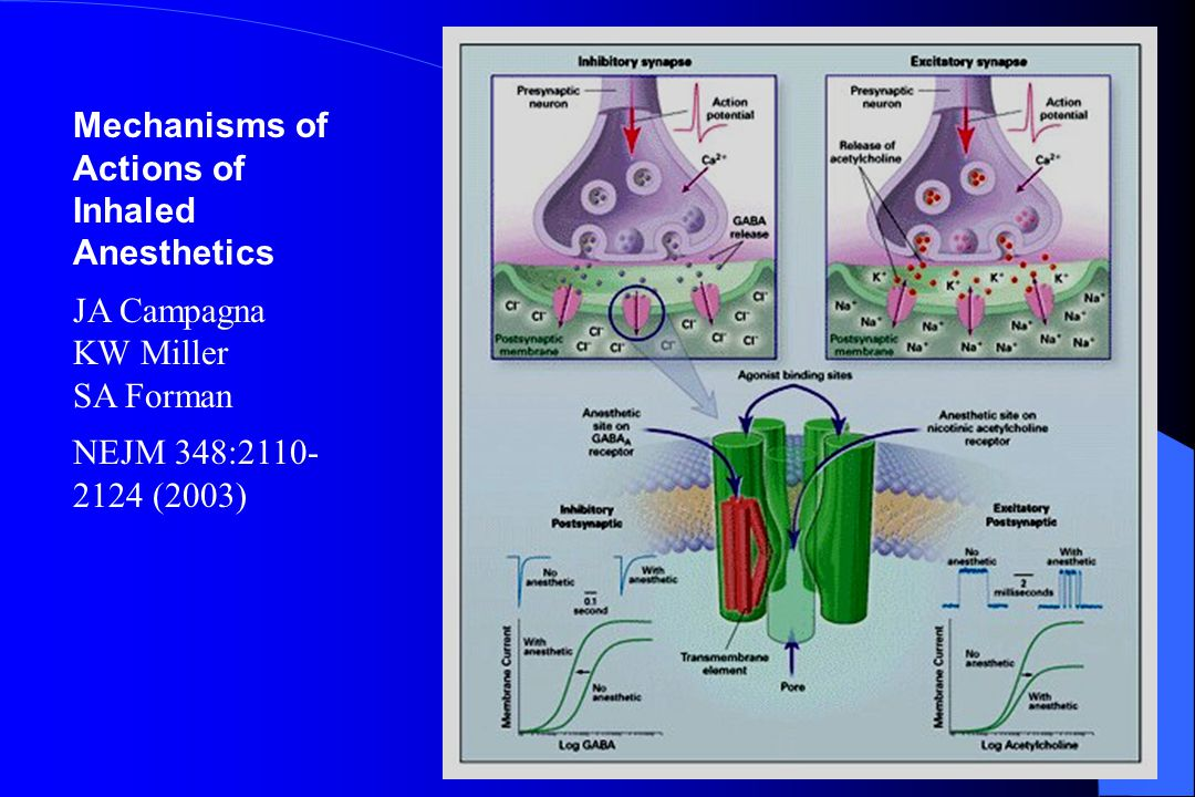 Mechanisms of Actions of Inhaled Anesthetics