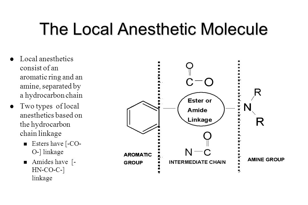 The Local Anesthetic Molecule