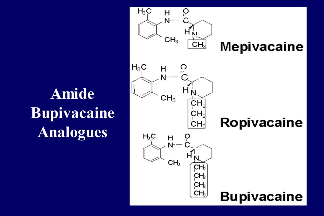 Amide Bupivacaine Analogues