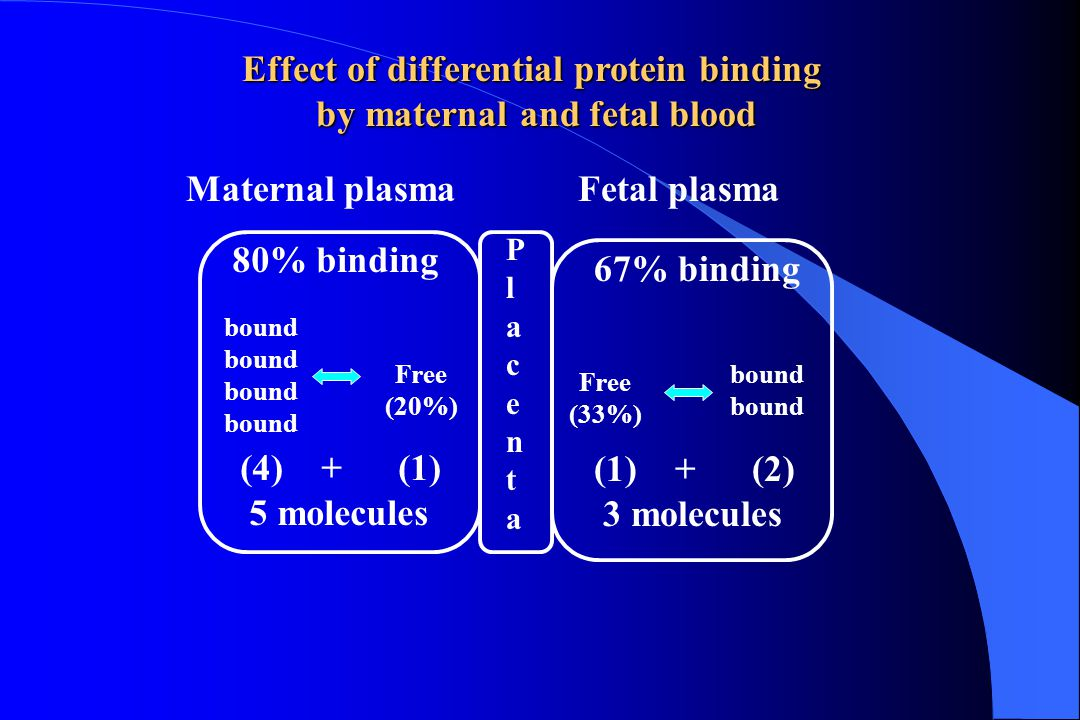 Effect of differential protein binding by maternal and fetal blood