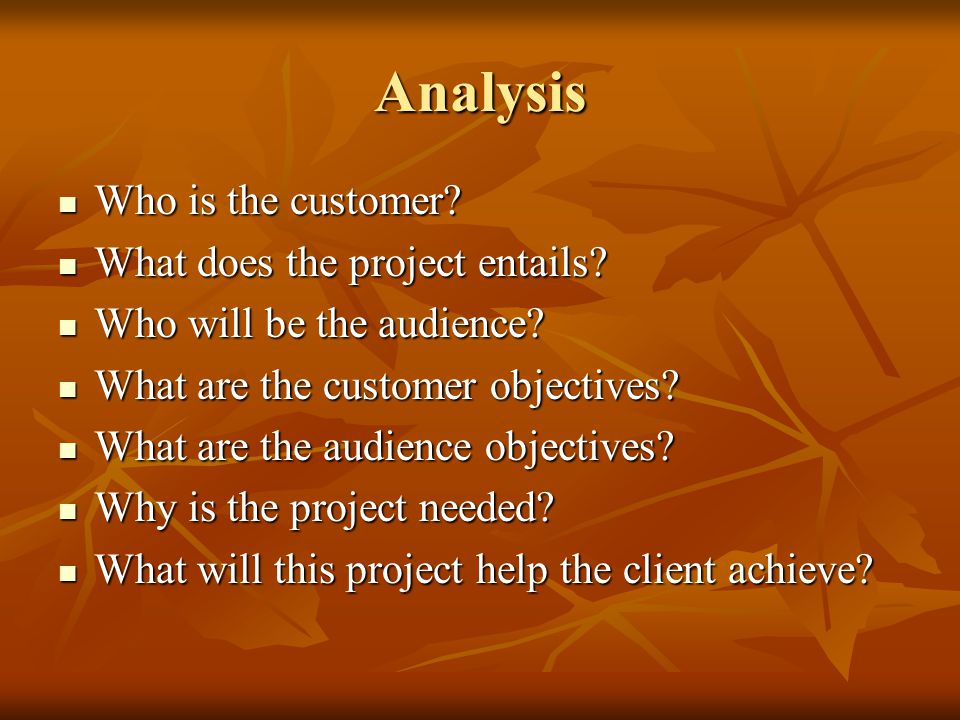 Analysis Who is the customer What does the project entails