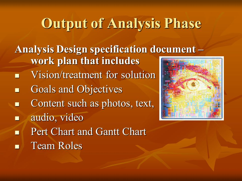 Output of Analysis Phase