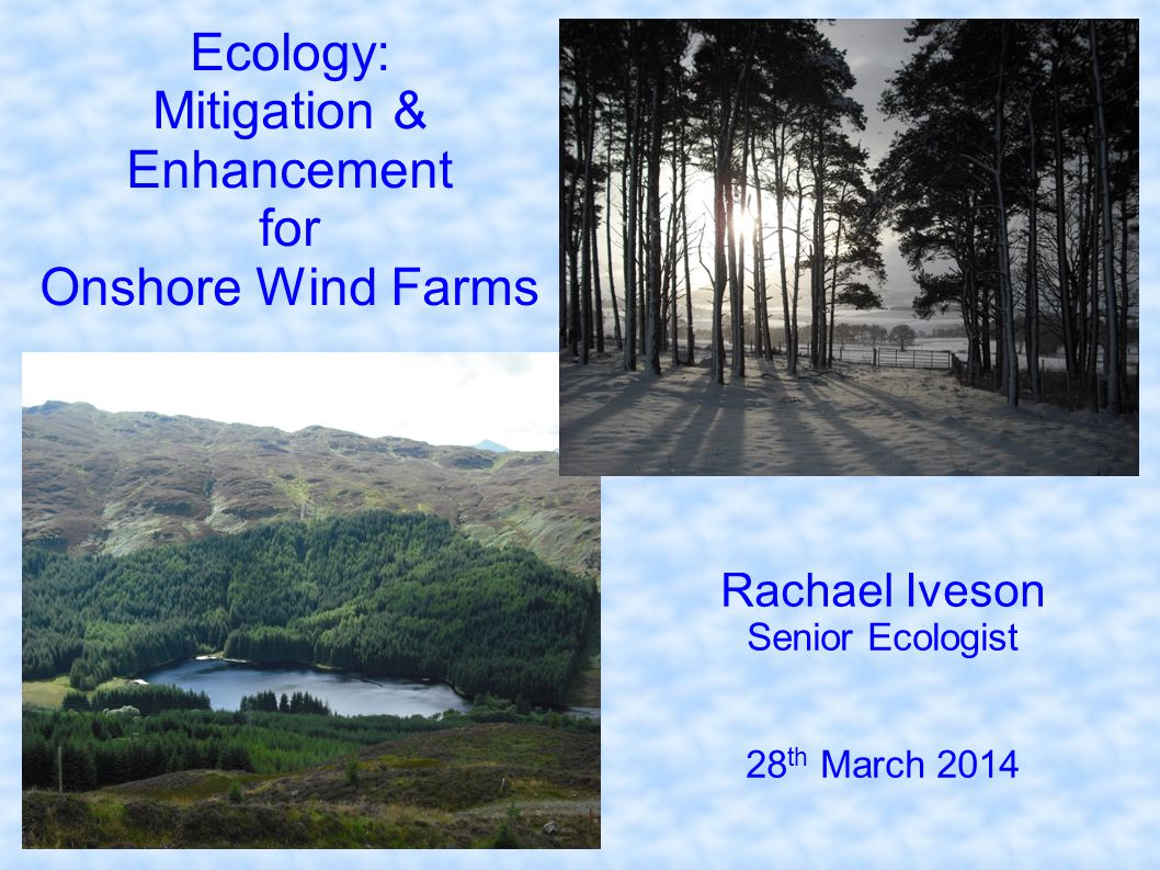 Ecology: Mitigation & Enhancement for Onshore Wind Farms