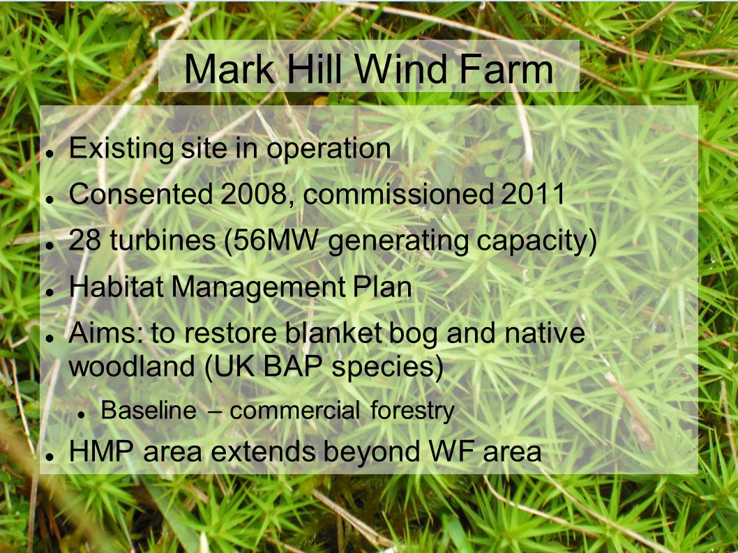 Mark Hill Wind Farm Existing site in operation