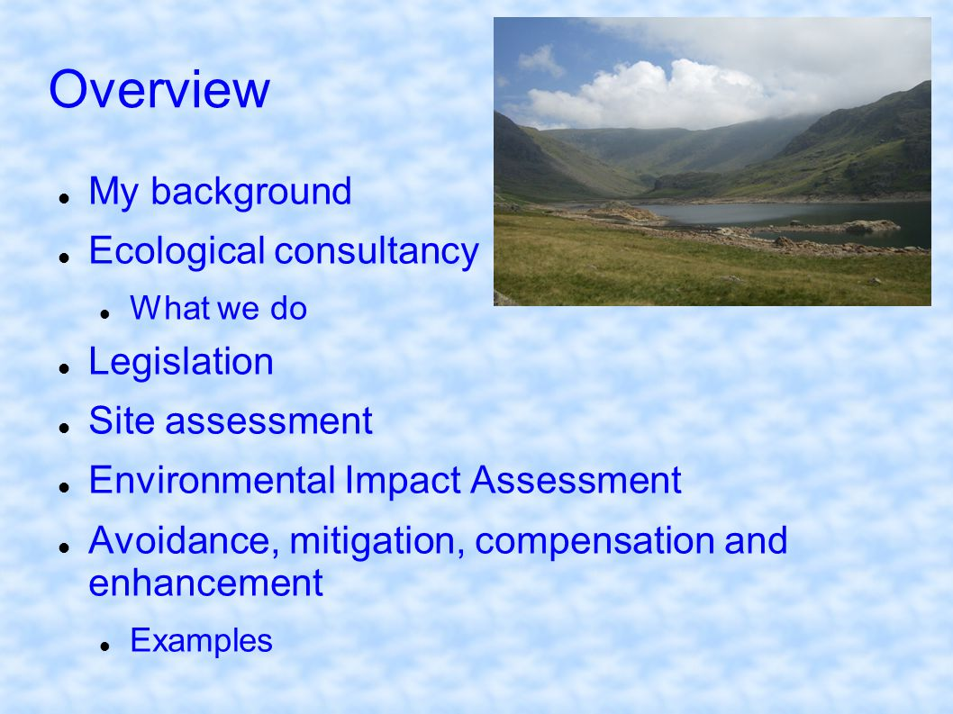 Overview My background Ecological consultancy Legislation