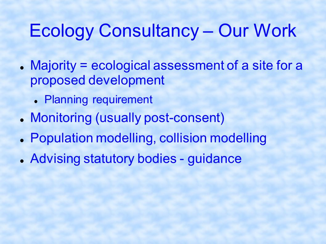 Ecology Consultancy – Our Work
