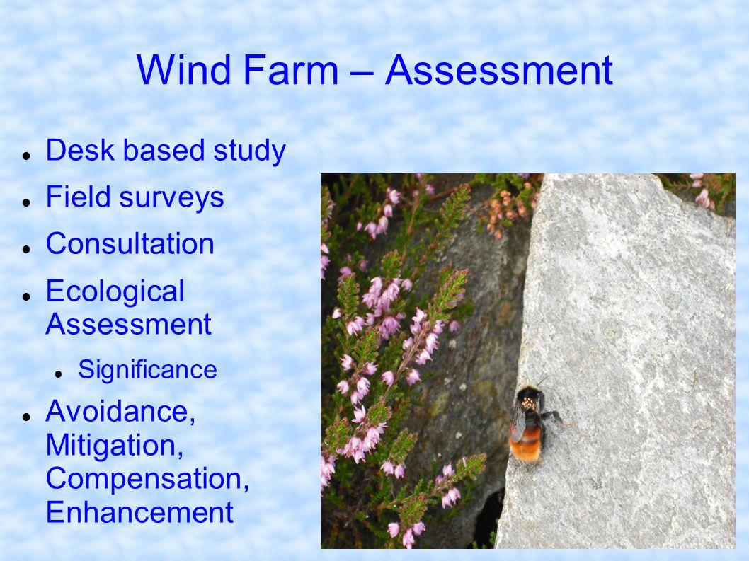 Wind Farm – Assessment Desk based study Field surveys Consultation