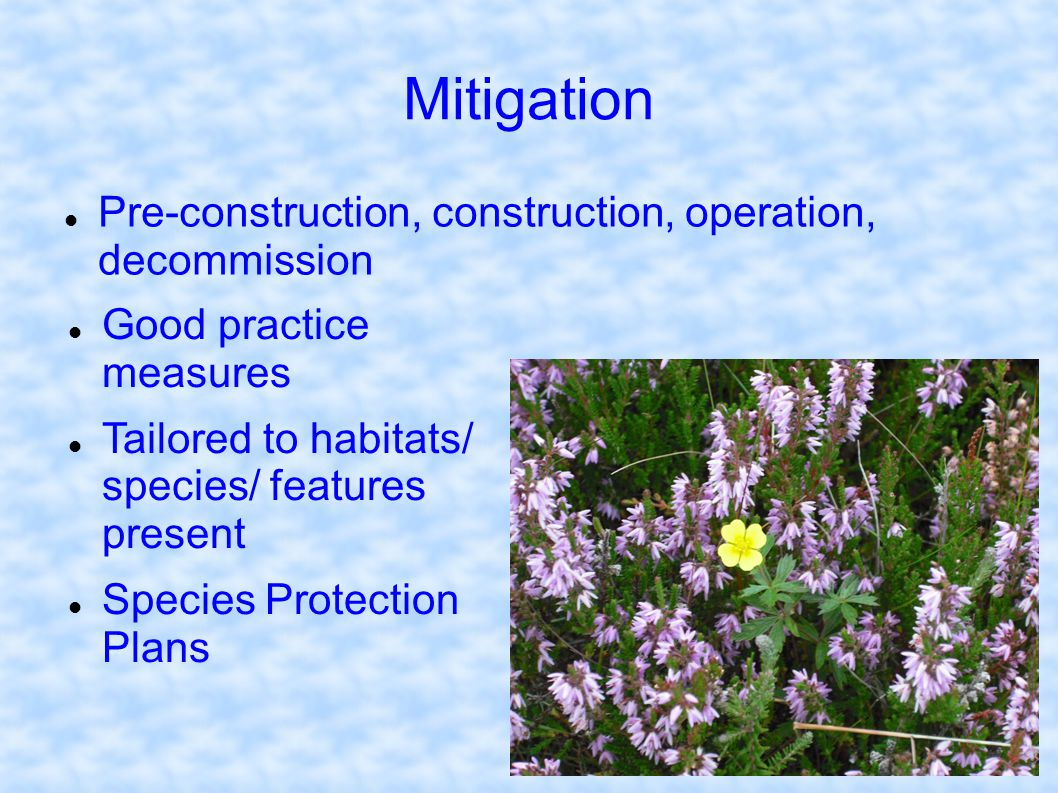 Mitigation Pre-construction, construction, operation, decommission