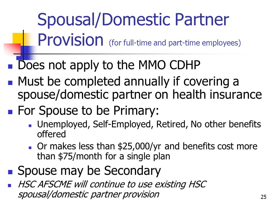Spousal/Domestic Partner Provision (for full-time and part-time employees)