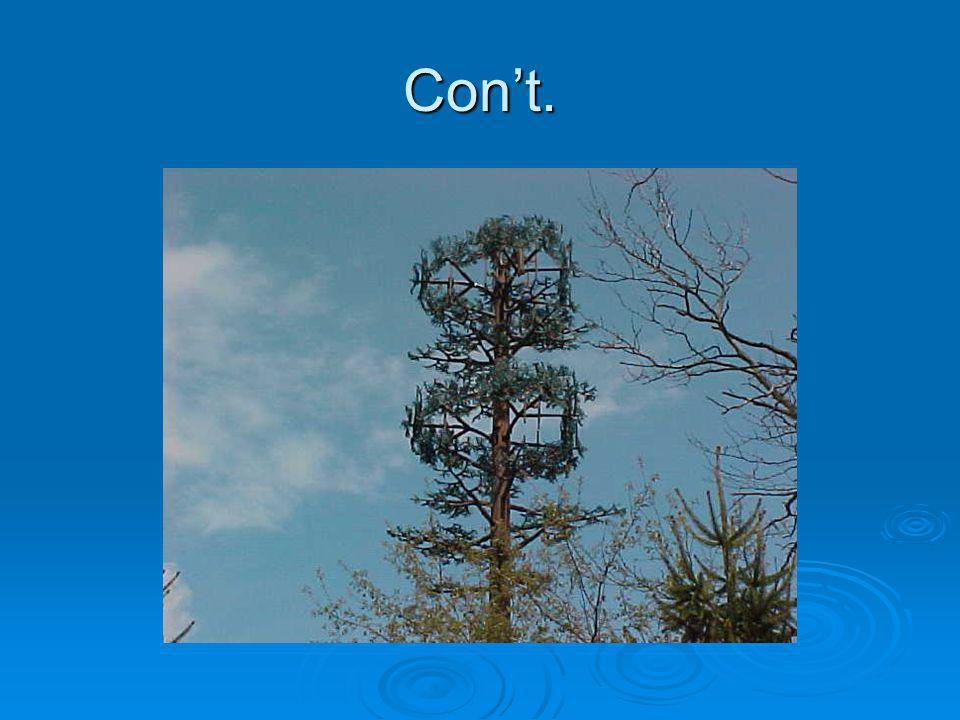 Con't.