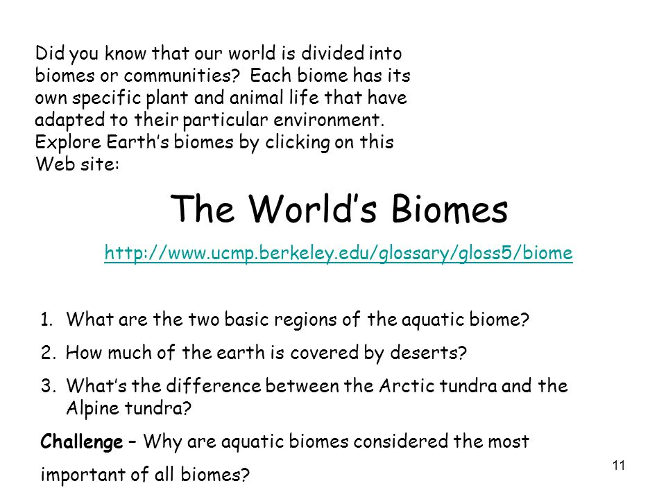 Did you know that our world is divided into biomes or communities