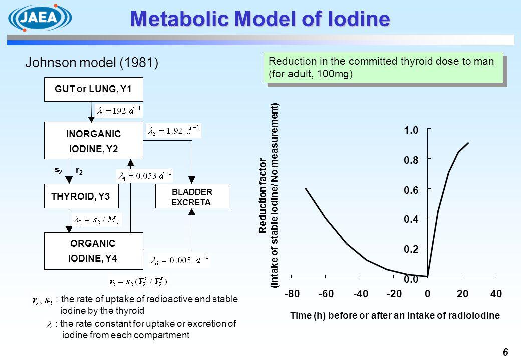 Metabolic Model of Iodine