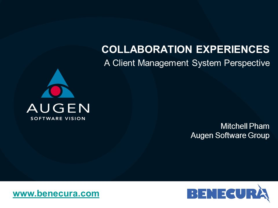 Agenda Augen Software Group & Benecura – NGO Sector Experience