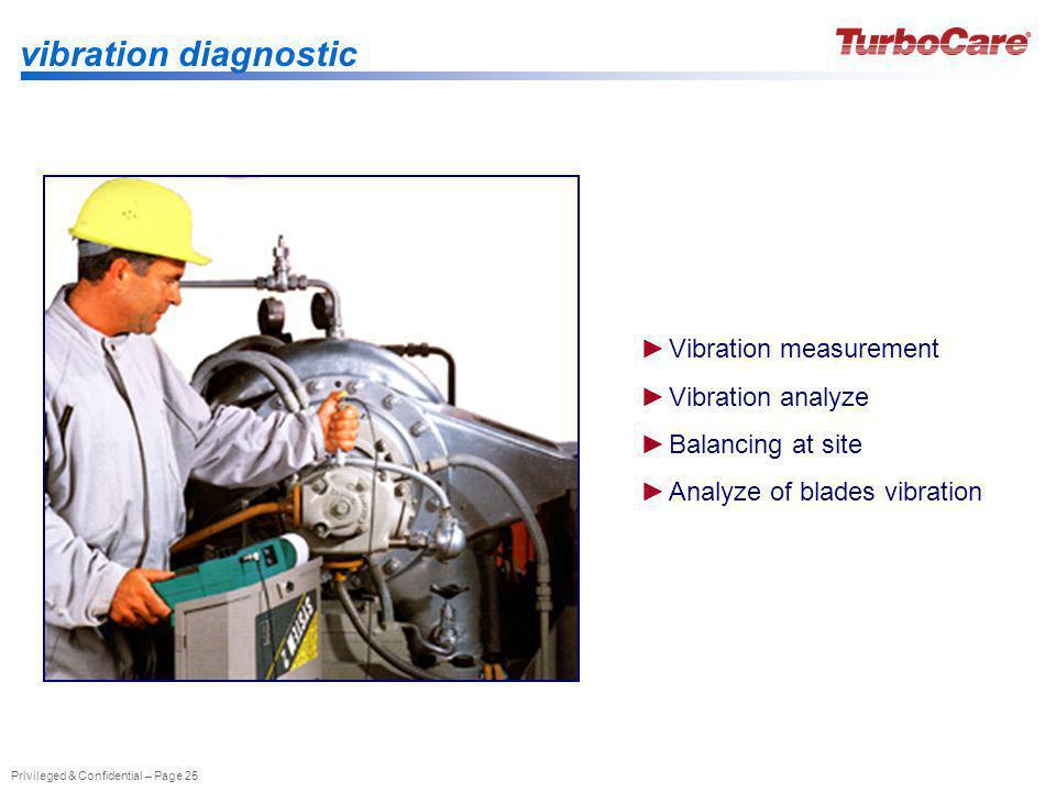 vibration diagnostic Vibration measurement Vibration analyze