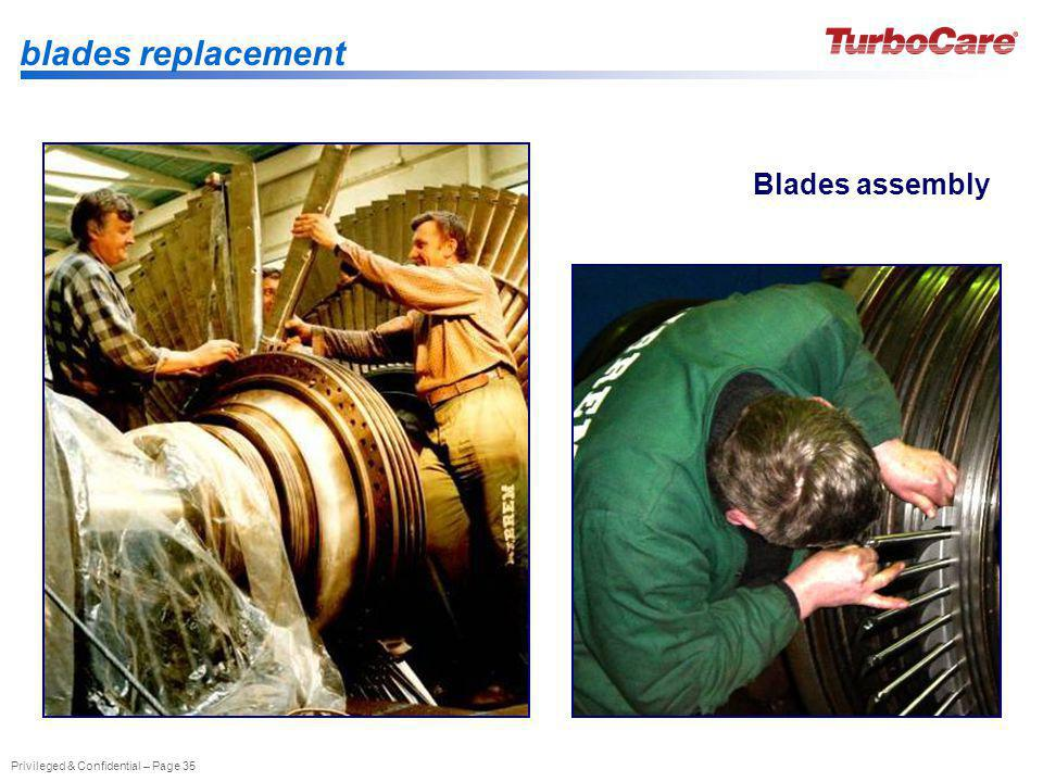 blades replacement Blades assembly