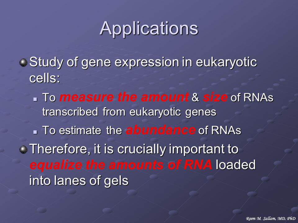 Applications Study of gene expression in eukaryotic cells: