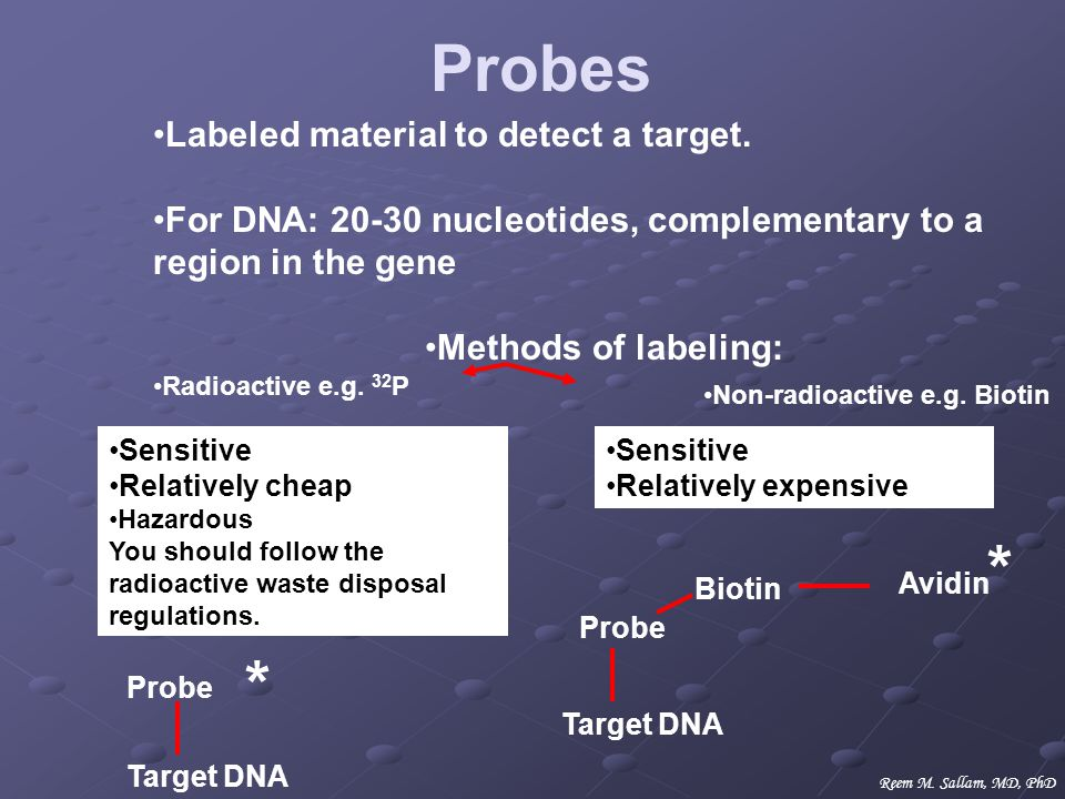 Probes * * Labeled material to detect a target.