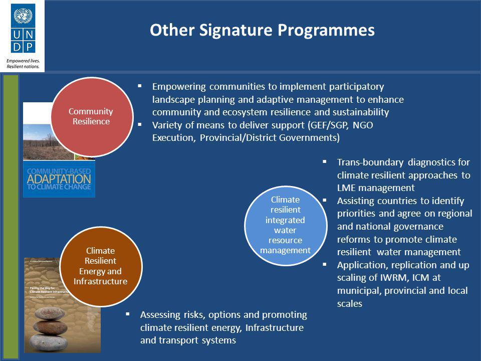 Other Signature Programmes