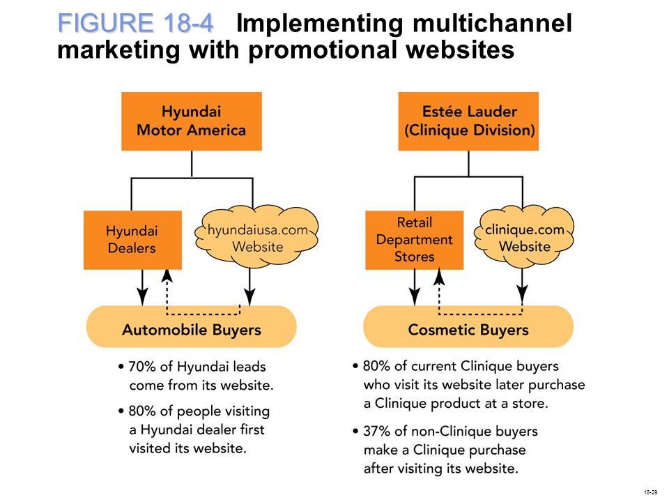 FIGURE 18-4 Implementing multichannel marketing with promotional websites