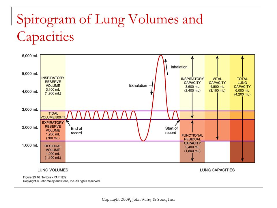 Spirogram of Lung Volumes and Capacities