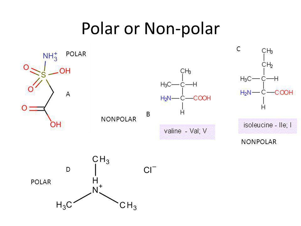 Polar or Non-polar C POLAR A B NONPOLAR NONPOLAR D POLAR