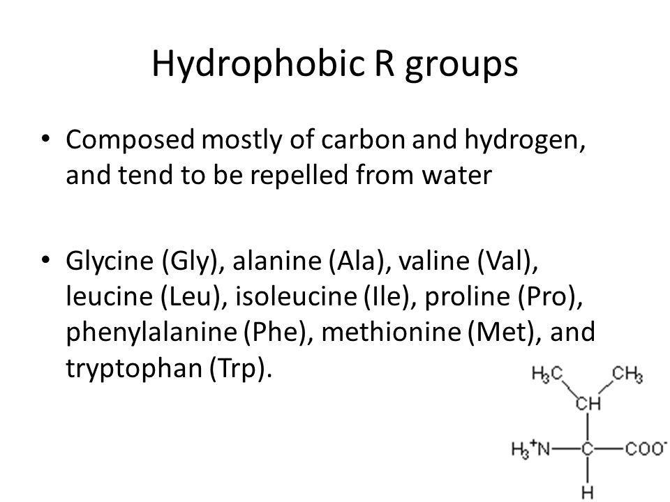 Hydrophobic R groups Composed mostly of carbon and hydrogen, and tend to be repelled from water.