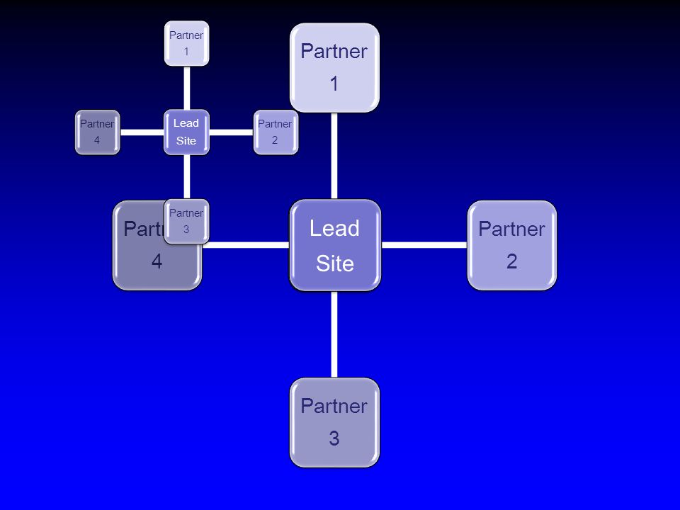 Lead Site Lead Site Partner 1 Partner 2 Partner 3 Partner 4 Lead Site