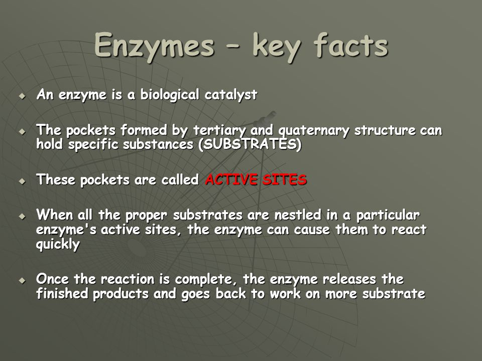 Enzymes Aims and Objectives: - ppt video online download | 960 x 720 jpeg 94kB