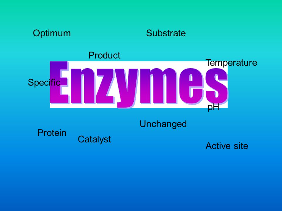Enzymes Optimum Substrate Product Temperature Specific pH Unchanged