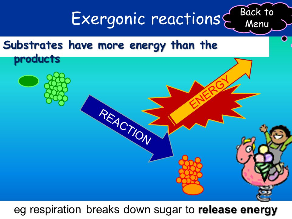 Exergonic reactions Substrates have more energy than the products