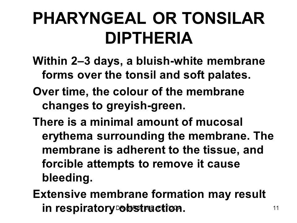 PHARYNGEAL OR TONSILAR DIPTHERIA