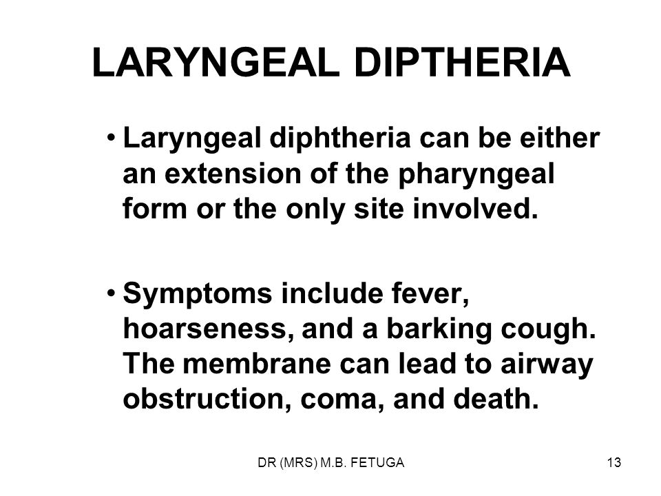 LARYNGEAL DIPTHERIA Laryngeal diphtheria can be either an extension of the pharyngeal form or the only site involved.