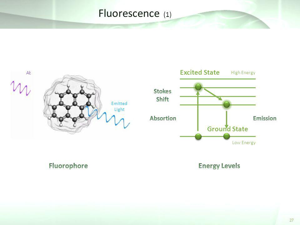 Fluorescence (1) Excited State Ground State Fluorophore Energy Levels