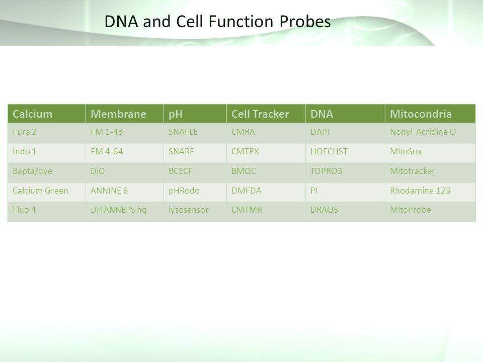 DNA and Cell Function Probes