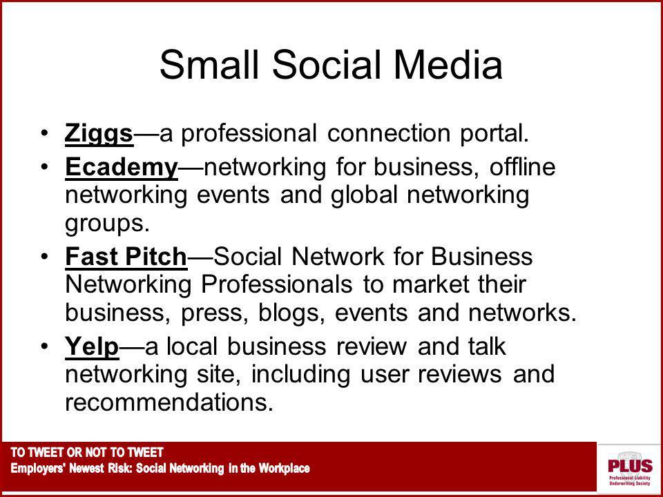 Small Social Media Ziggs—a professional connection portal.