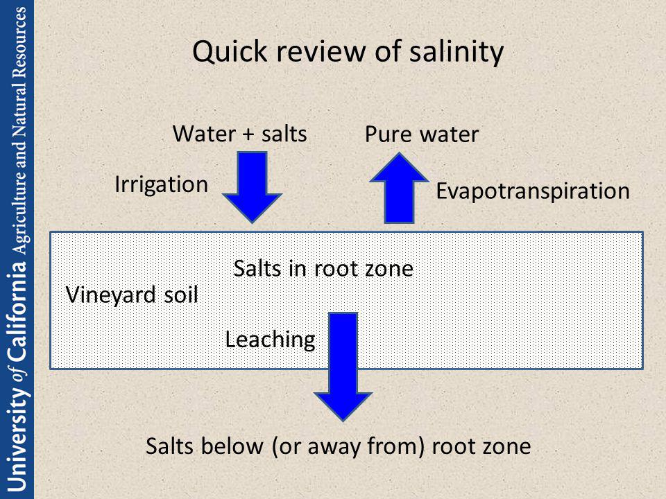 Quick review of salinity