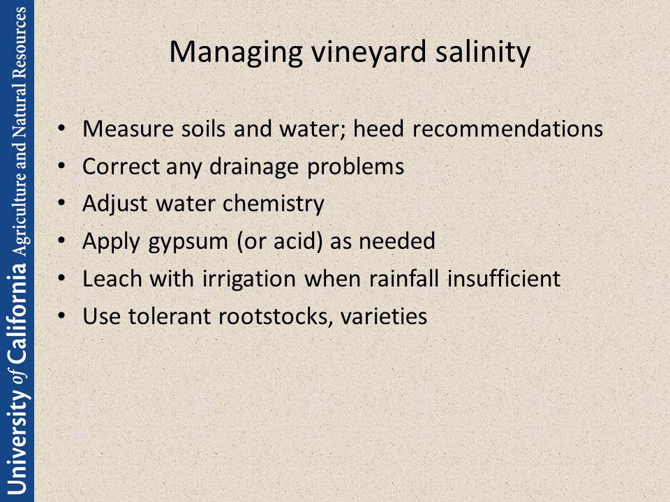 Managing vineyard salinity