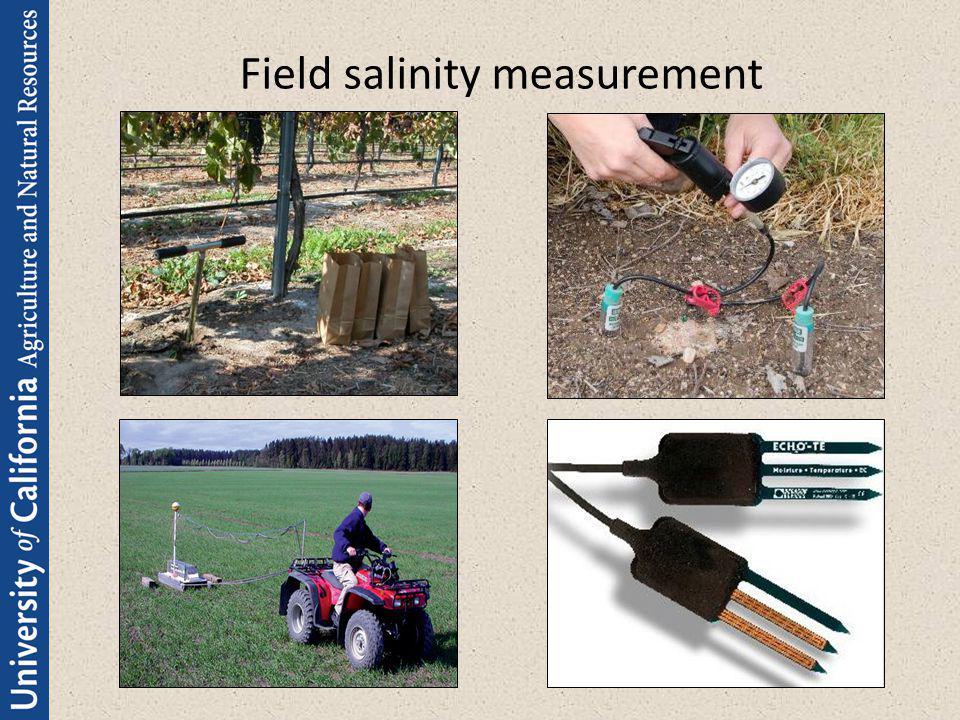Field salinity measurement